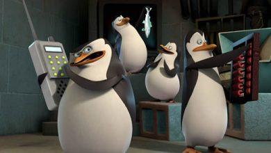 Photo of Pré-Estréia: Série Os Pinguins de Madagascar este mês na Nickelodean [Quinta-Feira!]
