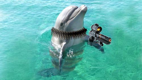 """Photo of Sega PROMETE que o golfinho Ecco retorna, literalmente, """"matador""""! [1º de Abril]"""