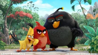 Photo of 2016 | A primeira imagem de Angry Birds Movie!