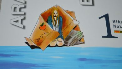 Photo of Arakawa Under the Bridge Vol. 01   A vida debaixo da ponte é cheia de surpresas! (Impressões)